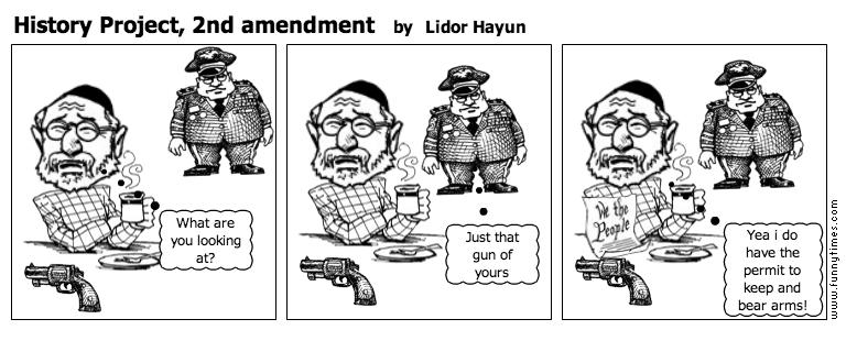 History Project, 2nd amendment by Lidor Hayun