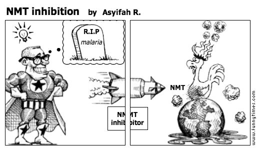 NMT inhibition by Asyifah R.