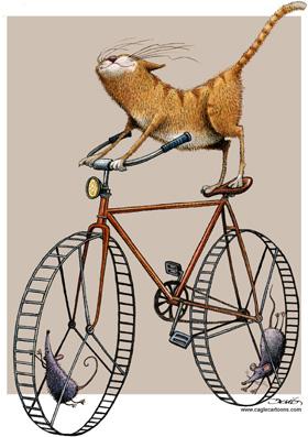 Castillejos - Hamster Wheel