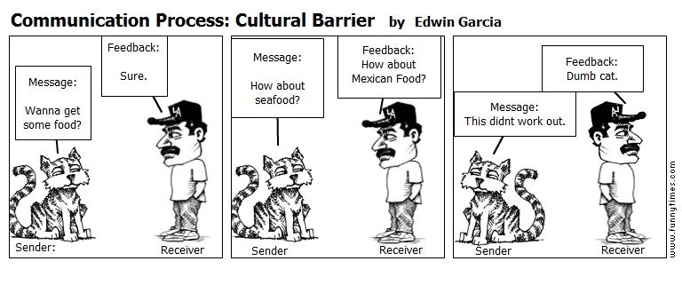 Communication Process Cultural Barrier | The Funny Times