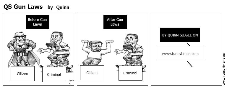 QS Gun Laws by Quinn