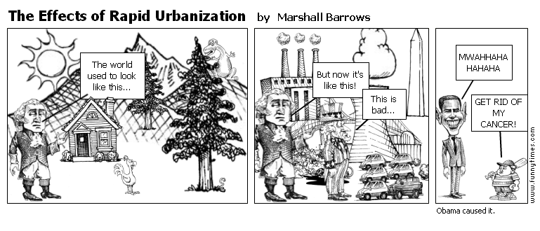The Effects of Rapid Urbanization | The Funny Times