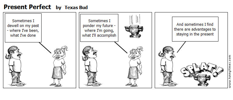Present Perfect by Texas Bud