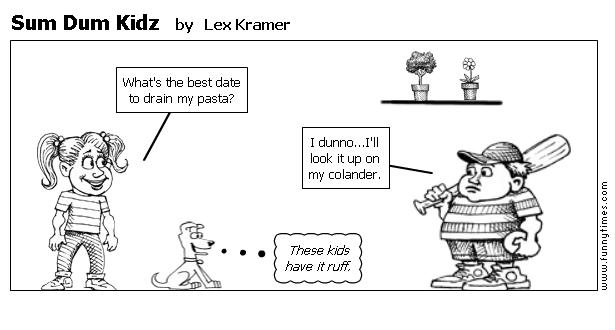 Sum Dum Kidz by Lex Kramer