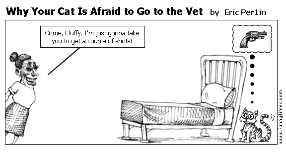 Why Your Cat Is Afraid to Go to the Vet by Eric Per1in