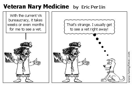 Veteran Nary Medicine by Eric Per1in