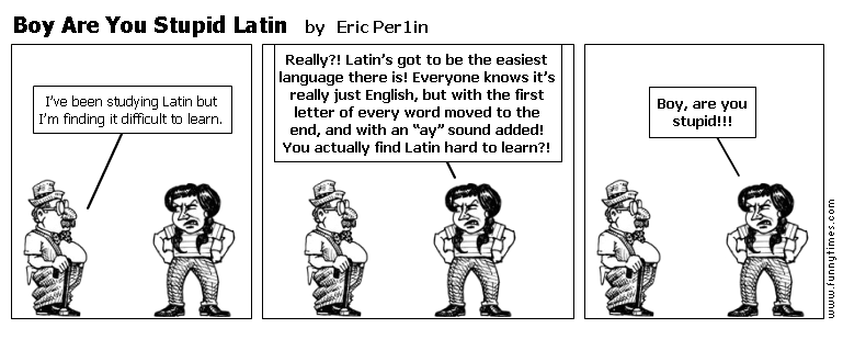 Boy Are You Stupid Latin by Eric Per1in