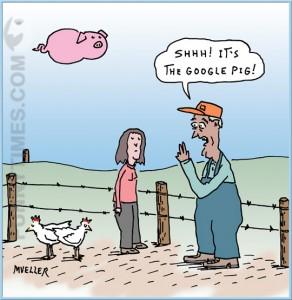 Mueller - Google Pig
