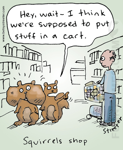 Streeter - Squirrels Shop