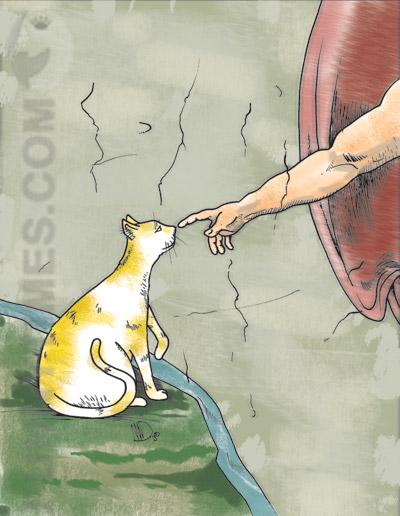 Draudt - Sistine Kitty