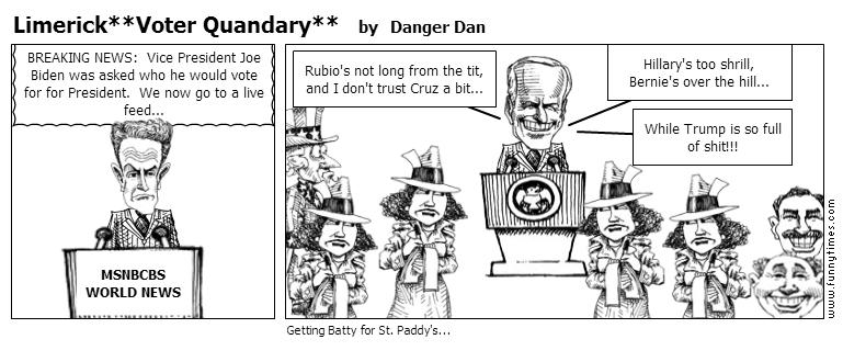 LimerickVoter Quandary by Danger Dan